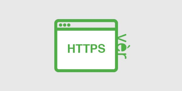 HTTPS security protocols